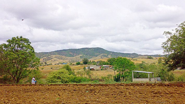メキシコ・オアハカ州ラ ウニオン テハラパン